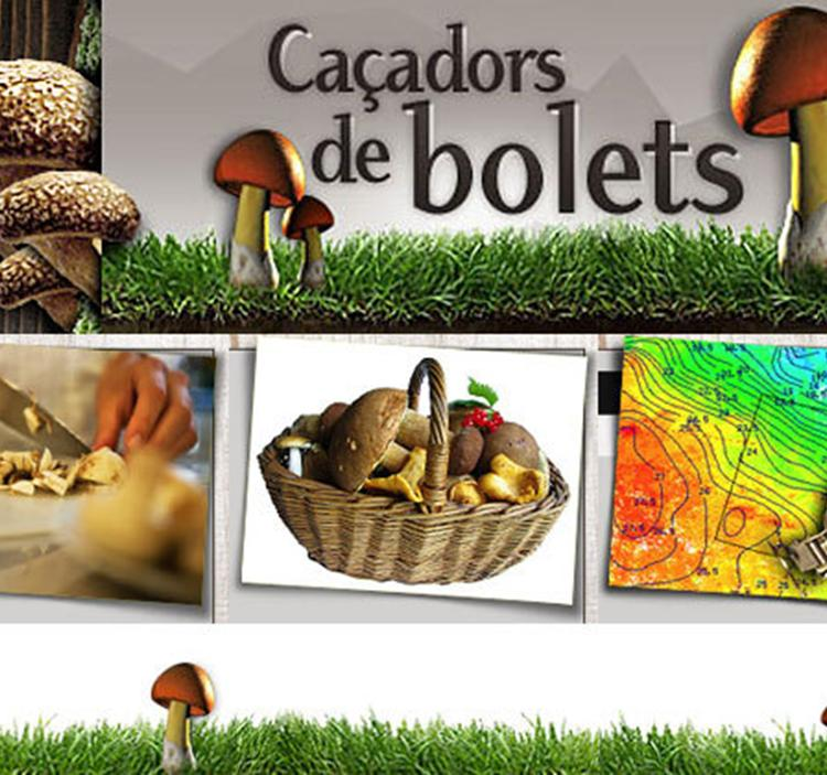 CACERA DE BOLETS AL BOSC DEL TILLÓ + 4X4 + BUS