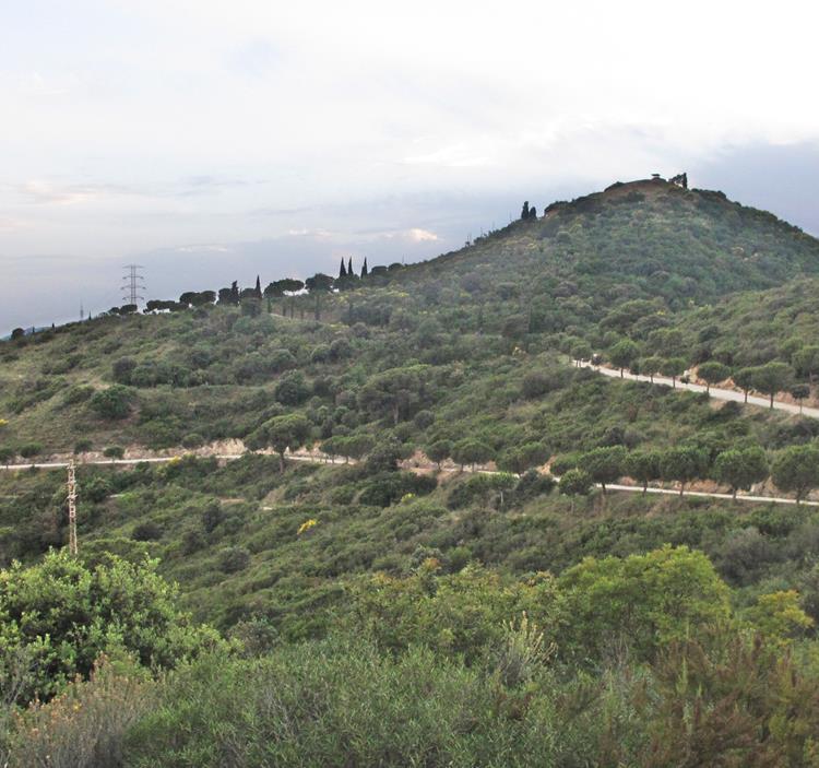 Caminada de vesprada: el Puig Castellar