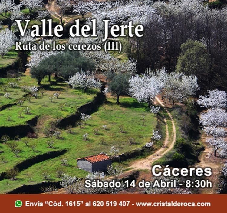 VALLE DEL JERTE RUTA DE LOS CEREZOS (III)