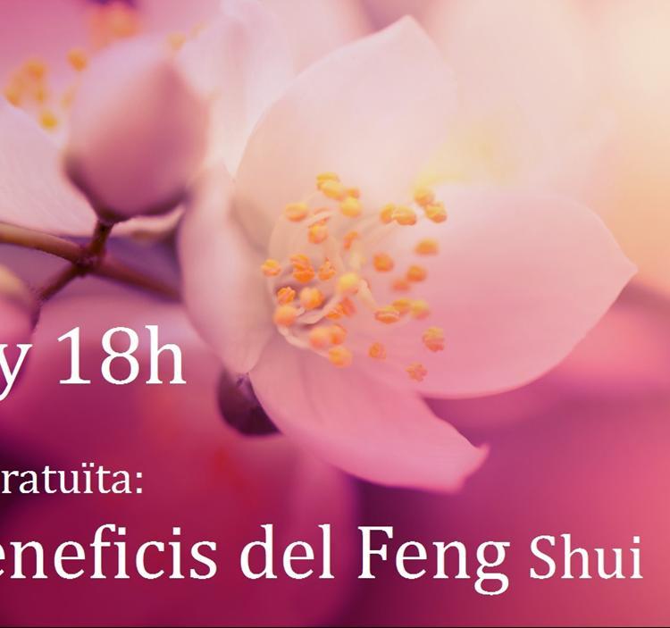 Charla los beneficios del feng shui gratis uolala for Tecnica del feng shui