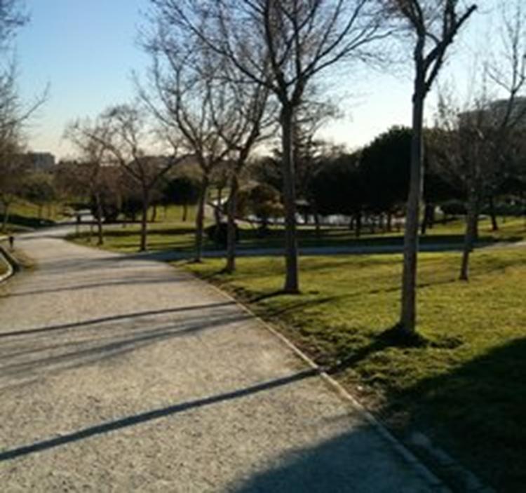 Por los parques de Madrid