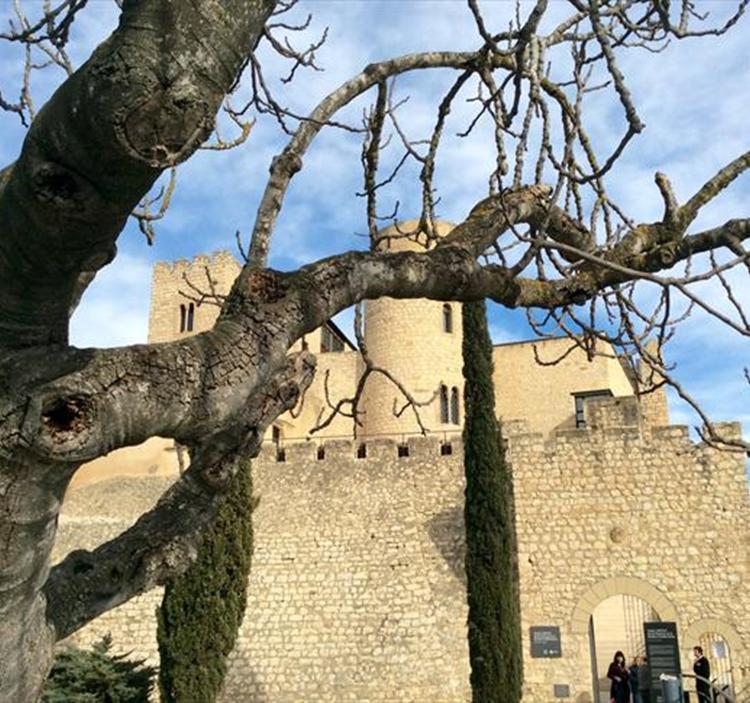 Ruta dels castells