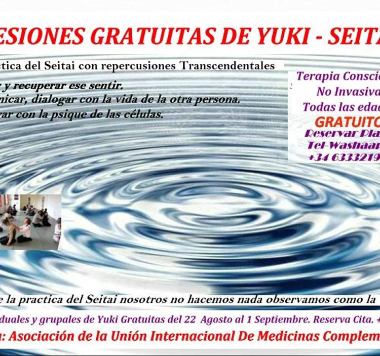Terapia Gratuita  Sesion  de Yuki Practica  Seitai