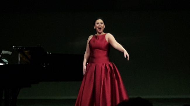 Concierto de opera y zarzuela en precioso palacio (23857)