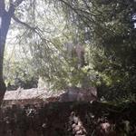 Camins d'aigua: riera Vallcàrquera i el Congost - 5