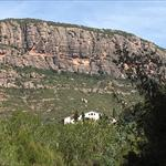 De Olesa a Monistrol amb vistes de Montserrat - 4