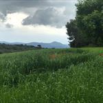 El Vallès a la primavera - 3
