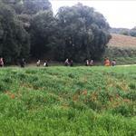 El Vallès a la primavera - 4