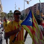 Via Catalana 2014: Ara és l'hora - 0